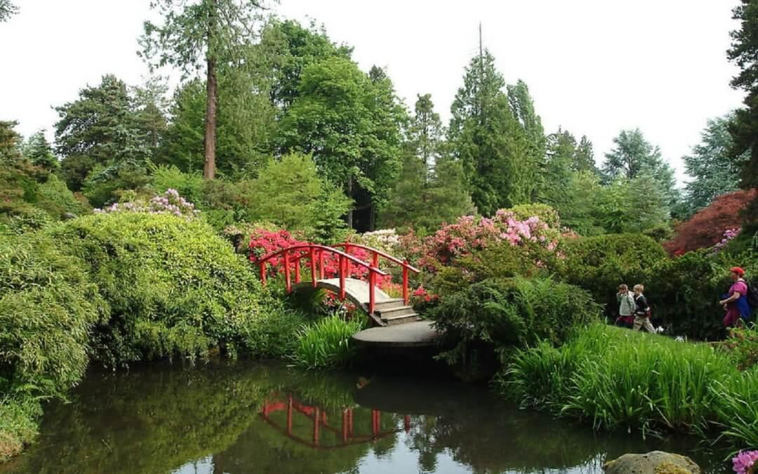 Kubota Garden Tour with Geri Kennedy